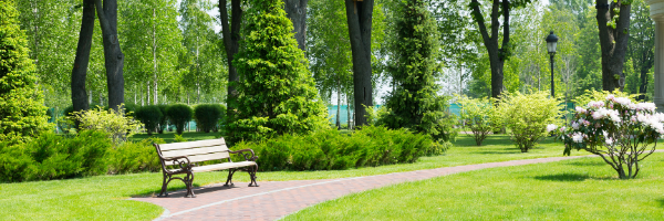 wooden park bench by walking path