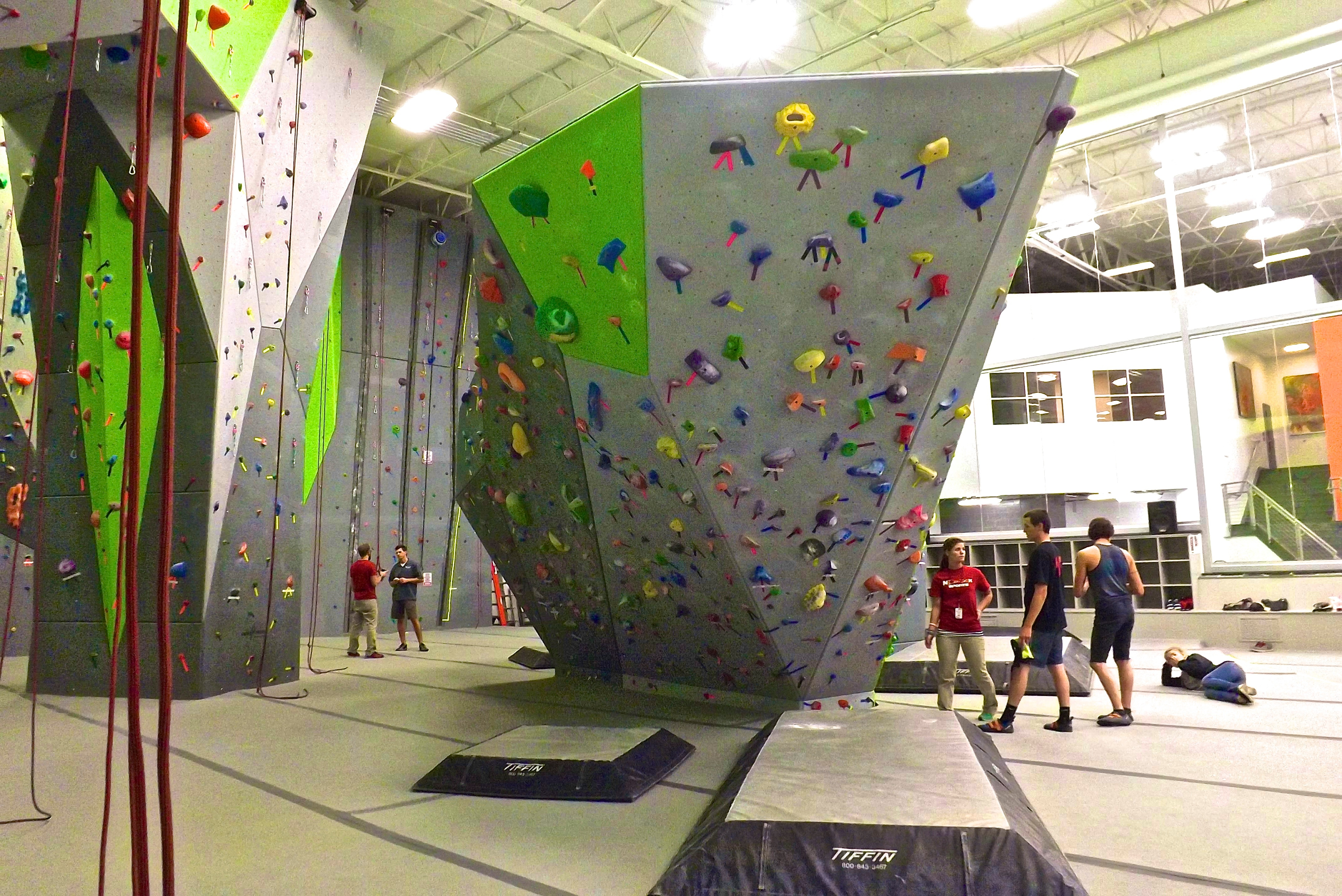 Nook Team Building at the Climbing Gyn