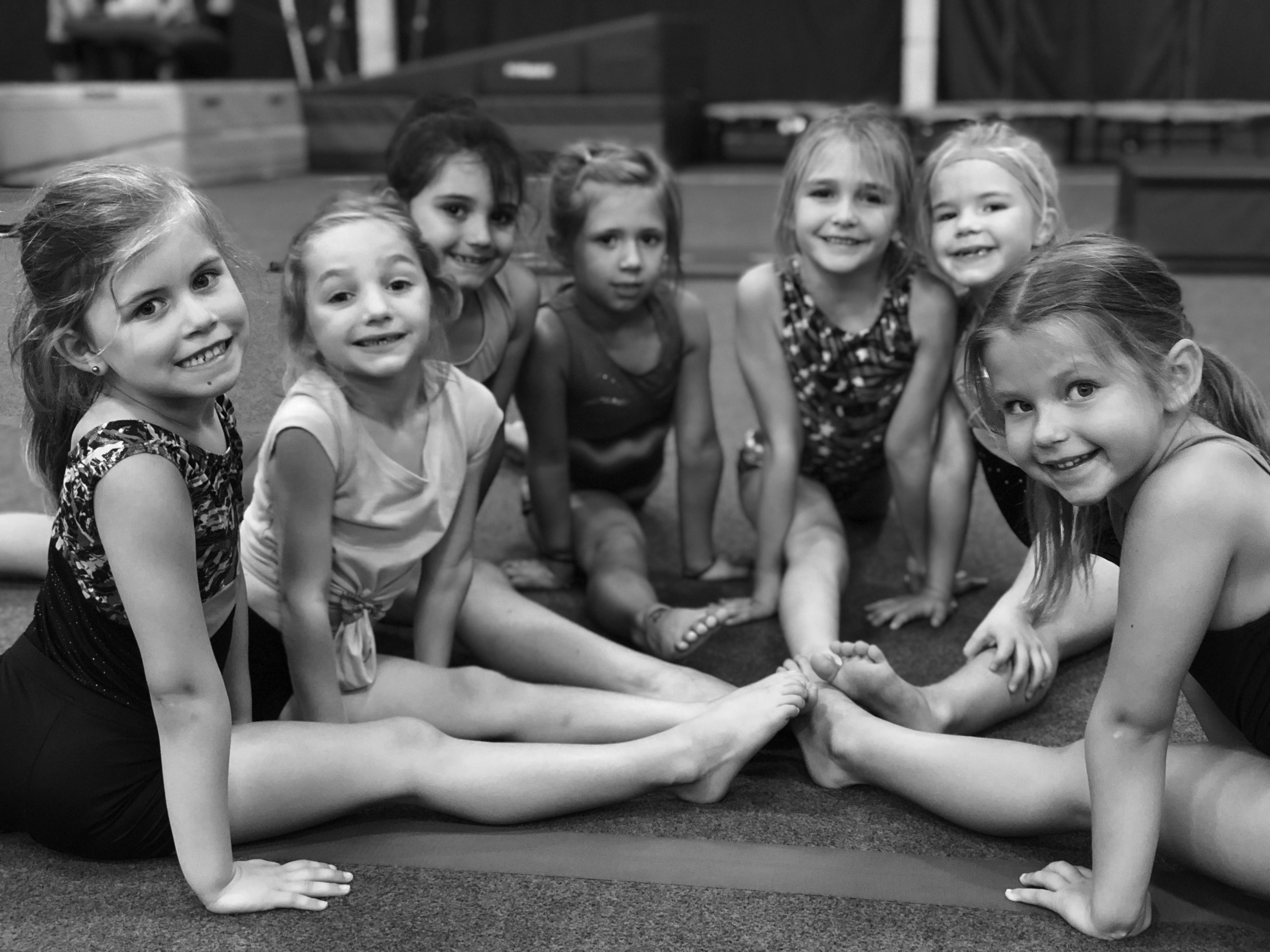Gymnastics winter 18-2