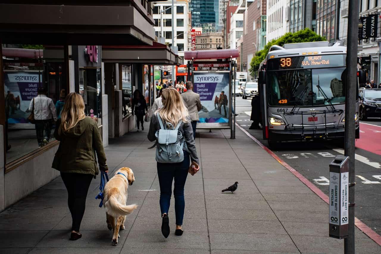 bus-busy-street